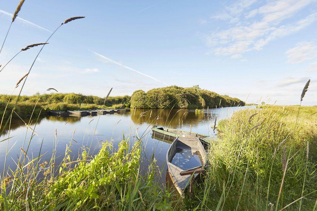 Les marais de Brière en Loire-Atlantique crédit photo A. Lamoureux